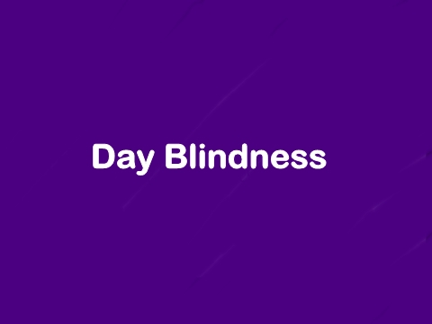 hemeralopia day blindness इन hindi